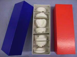 OrthoSelect: 3D Printed IDB Trays and Digital Orthodontic ...